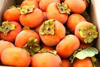 Хурма — солнечный фрукт для беременных