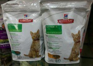 Корм для кошки: рекомендации ветеринара