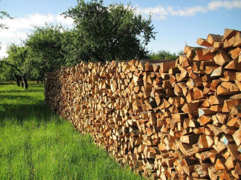 Что выгодней приобретать на зиму: дрова или брикеты?